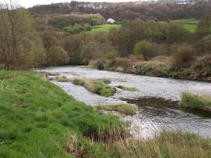 river calder - Copley Village