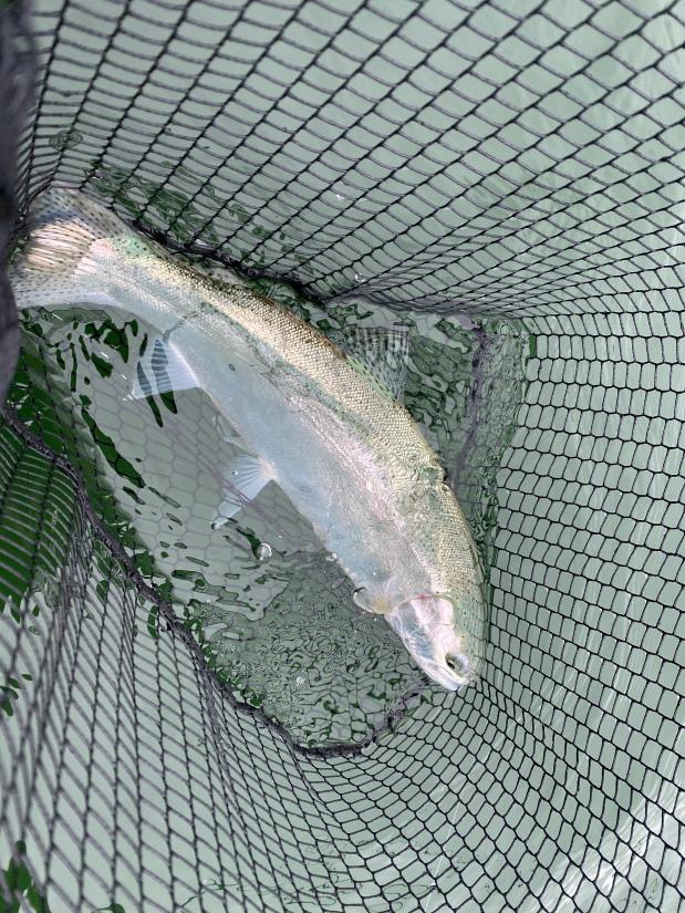 Carsington Water 15 July2020