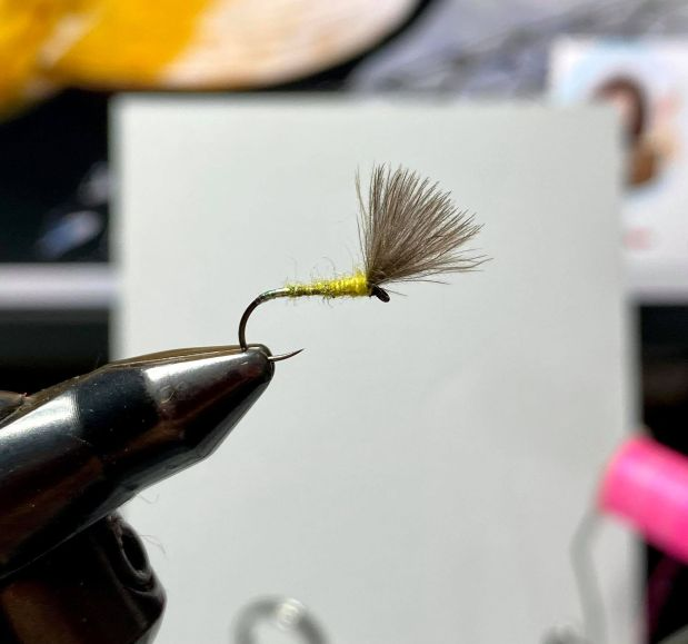 What's In My Fly Box week #4 Pearly Butt DryFly